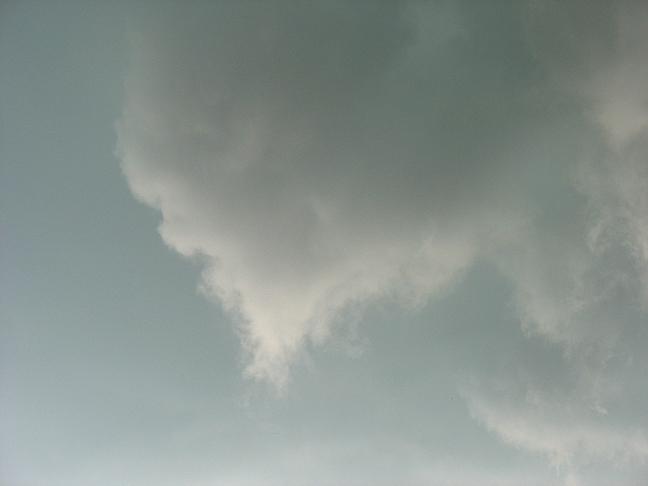 Afterstorm11_7-19-08