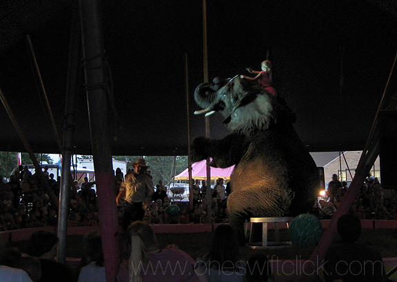 Circus1_7-24-08